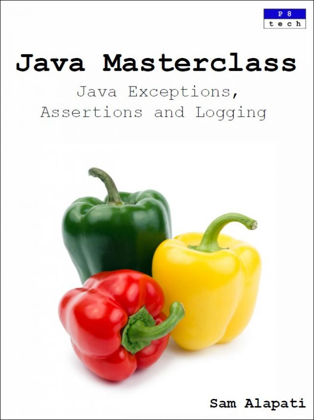 Java Exceptions Assertions Logging Book